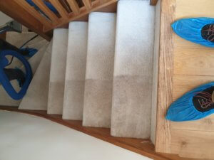 Carpet cleaning image